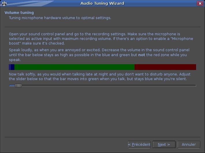 Mumble de la Grande Armée Capture-Audio%20Tuning%20Wizard-1